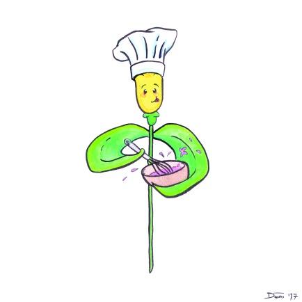 Rose Baking.jpg